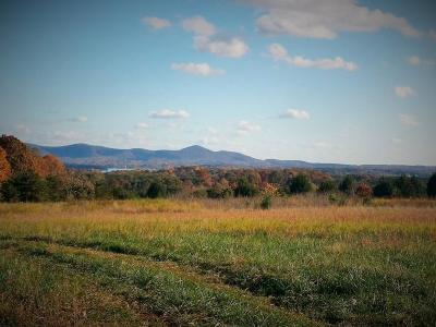 Bedford County Residential Lots & Land For Sale: Bluewater Dr