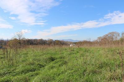Goodview Residential Lots & Land For Sale: Lot 8 Chapel View Ln