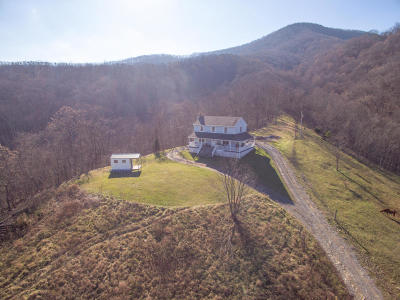 Botetourt County, Roanoke County Single Family Home For Sale: 1020 Docs Way