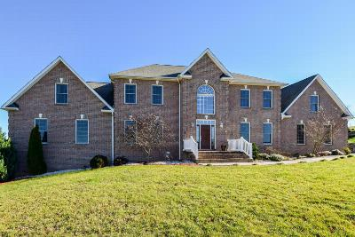 Botetourt County Single Family Home Sold: 91 Graystone Dr