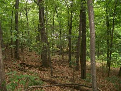 Roanoke Residential Lots & Land For Sale: Peakwood Dr SW