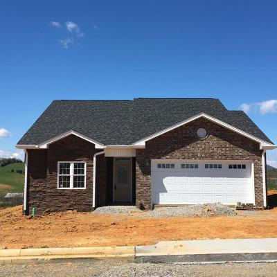 Botetourt County Single Family Home For Sale: 359 Settlers Rd