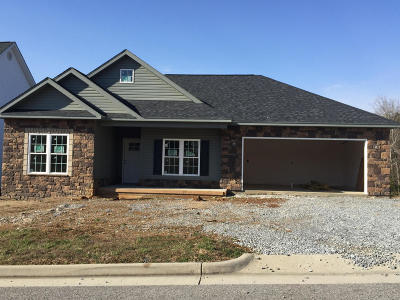 Roanoke County Single Family Home Sold: 7931 Carriage Park Dr