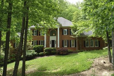 Roanoke County Single Family Home For Sale: 1628 Strawberry Mountain Dr