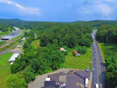 Franklin County Residential Lots & Land For Sale: 24712 Virgil H Goode Hwy