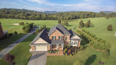 Botetourt County Single Family Home Sold: 98 Ashley Links Dr