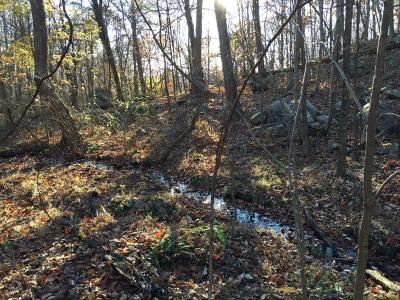 Bedford Residential Lots & Land For Sale: 2600 Flat Top Rd