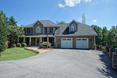 Roanoke County Single Family Home For Sale: 1236 Longview Rd