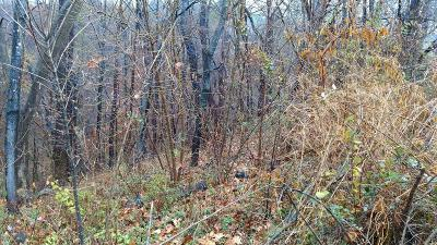 Roanoke County Residential Lots & Land For Sale: 740 Ruddell Rd