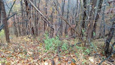 Roanoke County Residential Lots & Land For Sale: 700 Ruddell Rd