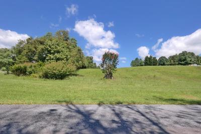 Daleville Residential Lots & Land For Sale: Roanoke Rd