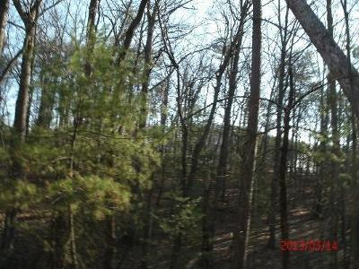 Residential Lots & Land For Sale: 5440 Hidden Acres Trl