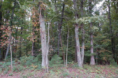 Vinton Residential Lots & Land For Sale: Mountain Valley Rd