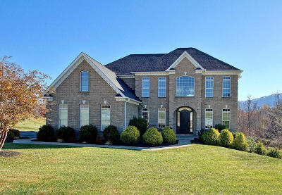 Roanoke County Single Family Home Sold: 7514 Grape Holly Ln