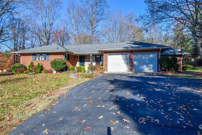 Franklin County Single Family Home For Sale: 1919 Virgil H Goode Hwy