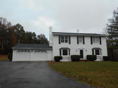 Botetourt County Single Family Home For Sale: 541 Stonehaven Ln