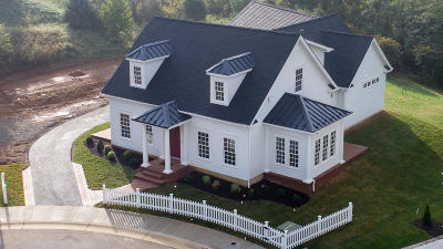 Botetourt County Single Family Home Sold: 42 Silk Reed Cir