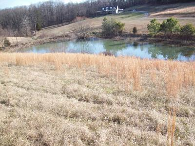 Fincastle Residential Lots & Land For Sale: Lot 1 Zion Hill Rd