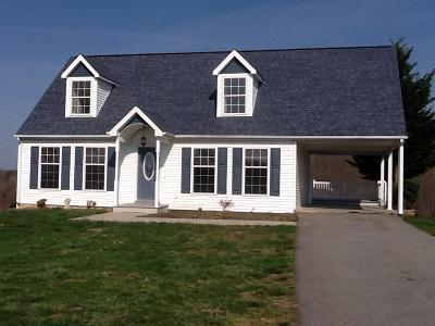 Bedford County Single Family Home For Sale: 1147 Bluewater Dr