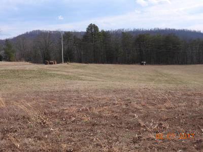 Roanoke County Residential Lots & Land For Sale: Lot 42 River Rock Rd