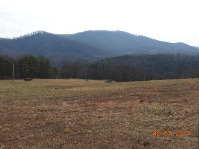 Roanoke County Residential Lots & Land For Sale: Lot 41 River Rock Rd
