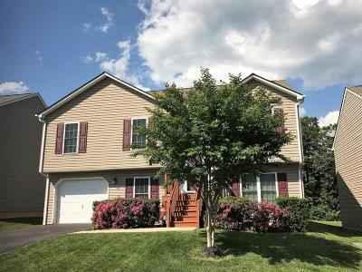Roanoke County Single Family Home For Sale: 3445 Green Ridge Ct