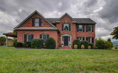 Roanoke County Single Family Home For Sale: 7816 College View Ct