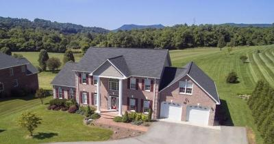 Daleville VA Single Family Home For Sale: $449,900