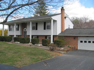Botetourt County Single Family Home For Sale: 366 Orchard Dr