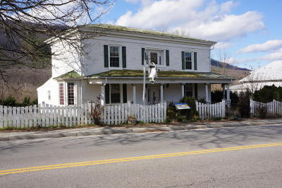 Botetourt County Single Family Home For Sale: 19391 Main St