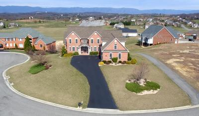 Daleville VA Single Family Home For Sale: $589,950