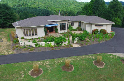 Botetourt County, Roanoke County Single Family Home Sold: 11578 Bottom Creek Rd