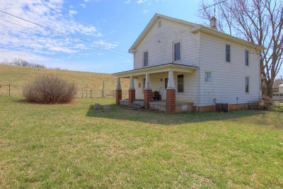 Bedford County Single Family Home For Sale: 4396 Horseshoe Bend Rd