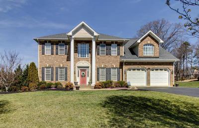 Botetourt County Single Family Home For Sale: 137 Butler Ct