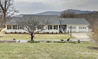 Botetourt County Single Family Home For Sale: 1608 Porters Mountain Rd