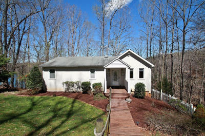 Moneta Single Family Home For Sale: 205 Wilderness Way