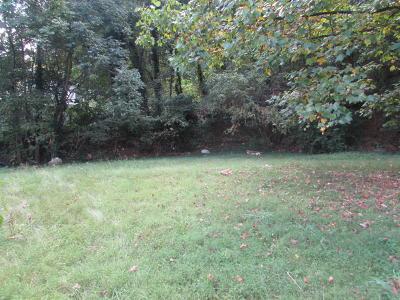 Raleigh Court, Grandin Court, Deyerle, Lee-Hi Gardens, Mountain View Court, Old Southwest, Wasena, Belmont, Riverdale, Riverland, Walnut Hill Residential Lots & Land For Sale: Riverland Rd SE
