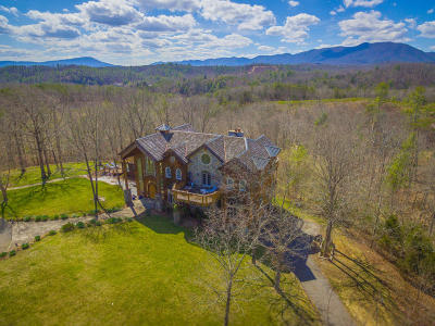 Botetourt County, Roanoke County Single Family Home For Sale: 801 Mt Pleasant Church Rd
