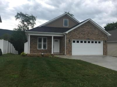 Roanoke Single Family Home For Sale: 953 Bolejack Blvd