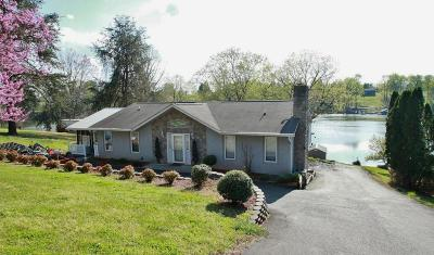 Bedford County, Franklin County, Pittsylvania County Single Family Home For Sale: 1508 Kaseys Lakeview Dr