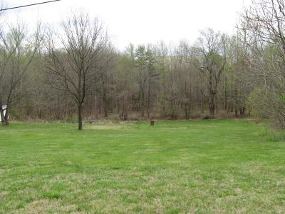 Rocky Mount VA Residential Lots & Land For Sale: $23,167