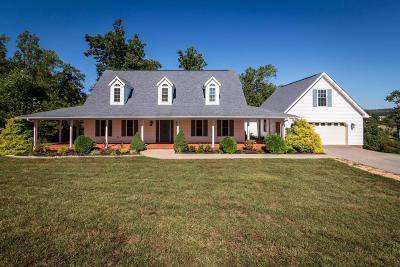 Roanoke County Single Family Home For Sale: 1087 Strawberry Hill Ct