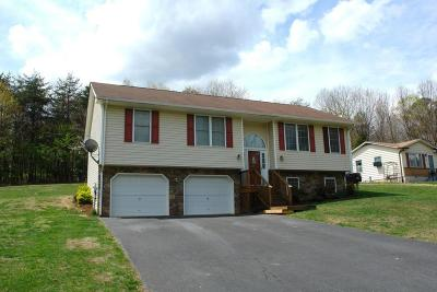 Botetourt County Single Family Home For Sale: 389 Fields Ave