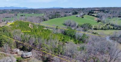 Bedford County, Franklin County, Pittsylvania County Residential Lots & Land For Sale: Moneta Rd