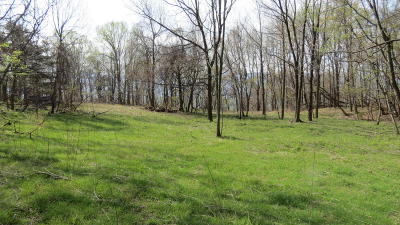 Residential Lots & Land For Sale: Twelve Oclock Knob Rd