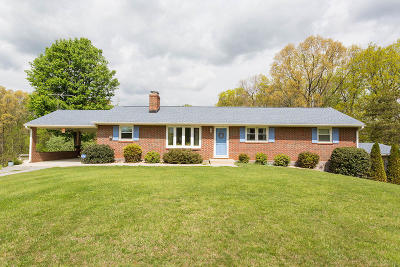 Roanoke County Single Family Home For Sale: 1075 Breezy Hill Rd