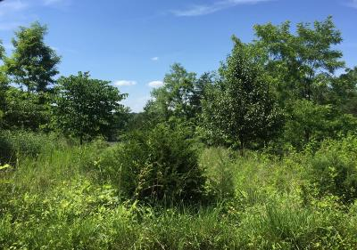 Bedford County Residential Lots & Land For Sale: Lot 2 Bluewater Dr