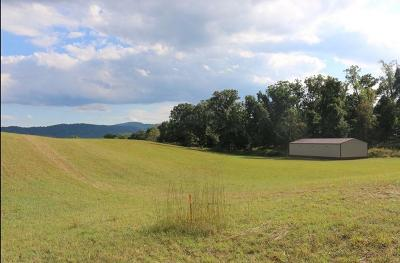 Blue Ridge Residential Lots & Land For Sale: Blue Ridge Springs Rd