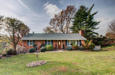 Botetourt County Single Family Home For Sale: 158 Woodlawn Ave
