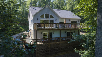 Franklin County Single Family Home For Sale: 8487 Burnt Chimney Rd